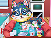 Play Baby Puppy Doctor