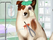 Play Doctor For Dog With A Blog