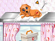 Play Dog Health Care