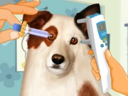 Play Eye Care Dog With A Blog