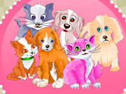 Play Pet Grooming Game