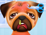 Play Princesses Puppy Care