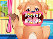Play Puppy Dental Care