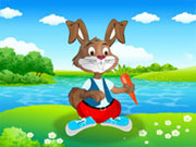Play Rabbit Dress up