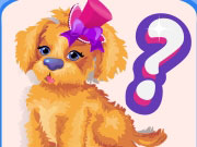 Play Wiz Dog Quiz